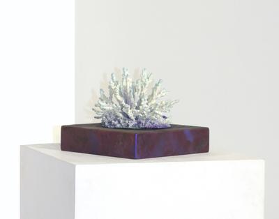 Corales híbridos y exposiciones virtuales: Shezad Dawood en Timothy Taylor