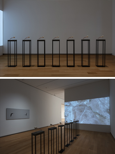 Hrair Sarkissian's <i>Final Flight</i> on show at the Modern Art Museum of Fort Worth, Texas