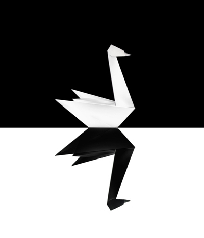 Of Black Swans and Hope
